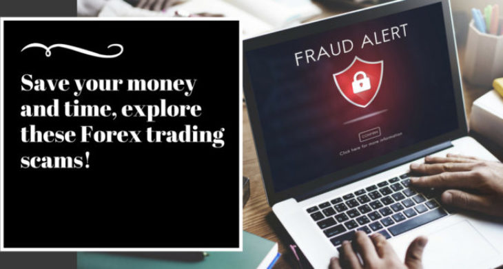 Save your money and time, explore these Forex trading scams